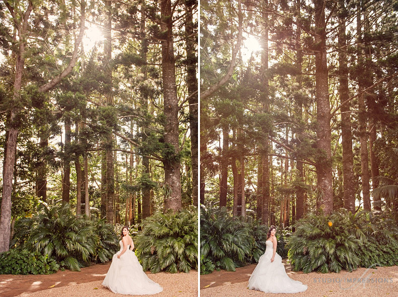 Romantic-Mount-Tamborine_Gold-Coast-Wedding
