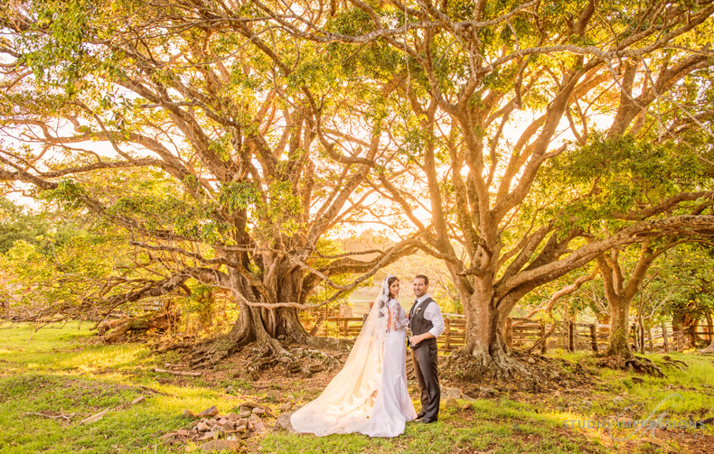 Spicers-Clovelly-Wedding-Photographer-35