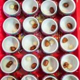 Chinese Tea Ceremony China Hong Kong 0009