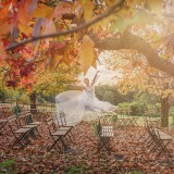 Wedding Styled Shoot at Spicers Clovelly 003